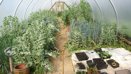 A polytunnel is useful for gardening in the unpredictable Normandy spring season