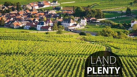 Discover the delights of Burgundy's Côte-d'Or