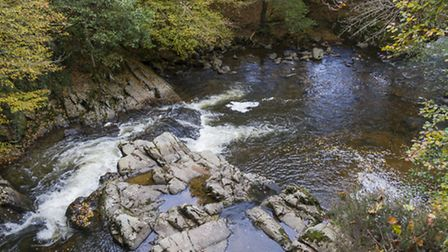 One of the many rivers dotting the Morvan regional park in Burgundy ©ThinkstockPhotos