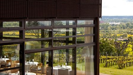 View over the private vineyard at Le St James near Bordeaux ©hotel le St James