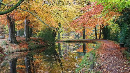 The Monmouthshire & Brecon Canal, near Llanover, Monmouthshire | Michael Kilner, Flickr CC 2.0
