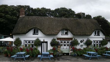 The beautiful thatched Holly Bush in Salt | General Views, Flickr CC2.0