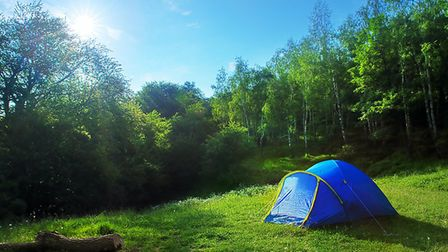 Rent out your garden to campers © Irochka / dreamstime