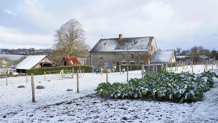 A blanket of snow over Rosie's farmhouse in winter