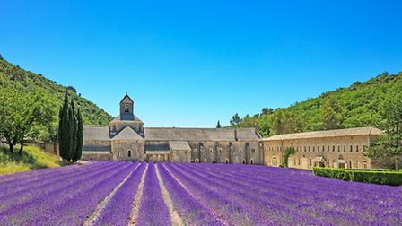 The breathtaking lavender fields in front of Senanque abbey ©ThinkstockPhotos