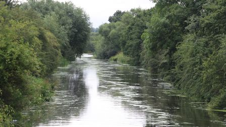 A quiet wooded length of the Selby Canal