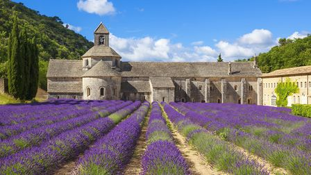The stunning Abbaye de Senanque in Provence © frederic prochasson / Thinkstockphotos