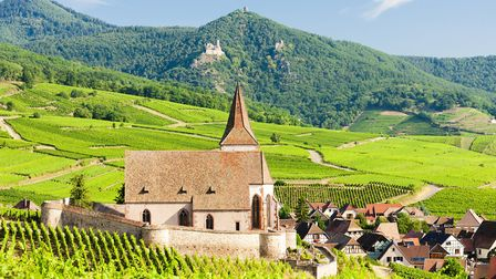 Hunawihr, on the Alsace wine route, is one of France's Plus Beaux Villages ©phbcz - Getty Images/Sto