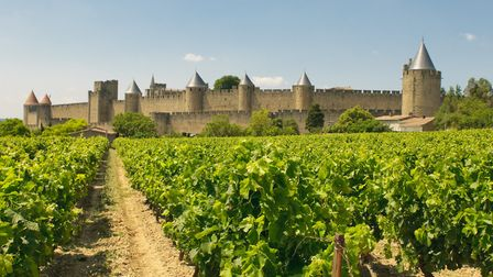 Home to tourist hotspots such the city of Carcassonne, Languedoc-Roussillon has France's largest win