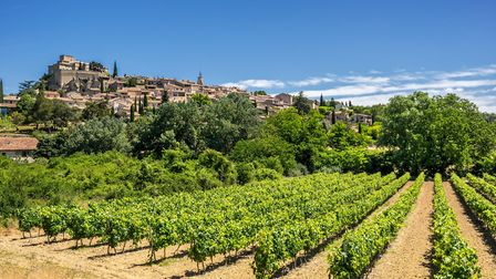 Rows of vines tickle the foot of Ansouis in the Luberon in Provence GordonBellPhotography - Getty Im