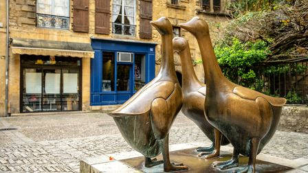 Find Sarlat's famous geese on Place des Oies © Jon Chica - Fotolia