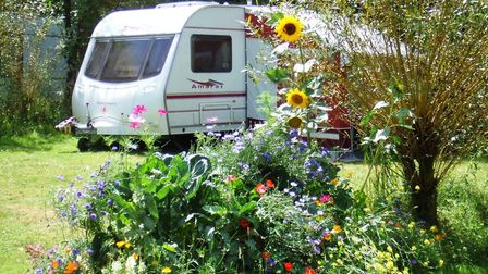 Meet expats who run successful campsites in France