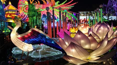 This light festival is a first for the village of Gaillac in Tarn (c) lantern industry group