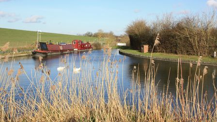 Wendover Arm (photo: Martin Ludgate)