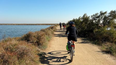 Exploring the Camargue by bicycle © www.fellowvelo.com