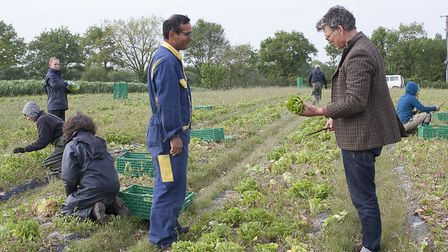 Riverford Organics founder Guy Watson discusses crops with agronomist Marco Altamirano