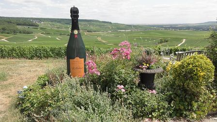 Enjoy a glass of champagne while looking at the vineyards © Serenity Barge