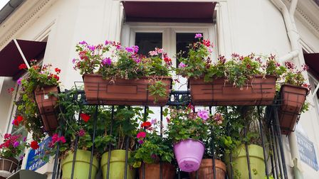 Get lots of gardening tips in the May issue of Living France © GettyImages