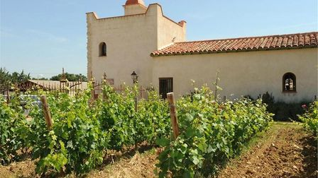 Our selection of vineyard properties are perfect for wine lovers