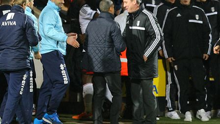 Norwich manager Chris Hughton and Fulham manager Rene Meulensteen shake hands at the end of the FA C