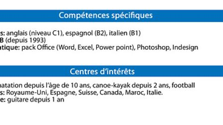 Skills and interests section of a French CV © Archant