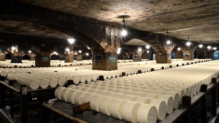 Roquefort cheese maturing in the Combalou caves in Aveyron © P Thebault / CRT-Occitanie