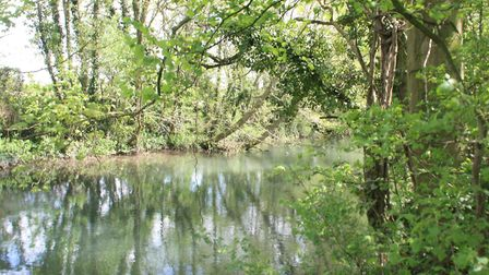 The canal shares its route with the River Frome for some distance near Whitminster (photo: Martin Lu