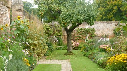Combine planting and paths to create interest in the garden