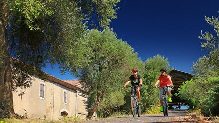 See the region's vineyards by bike. Pic: G&C Deschamps