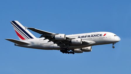 Air France are leaders in the pet transport field (c) Getty Images