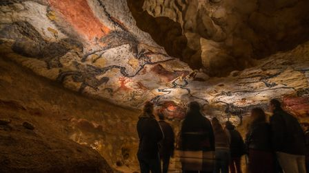 Marvel at the stunning cave art at Lascaux . Pic: Dan Courtice, Semitour Perigord