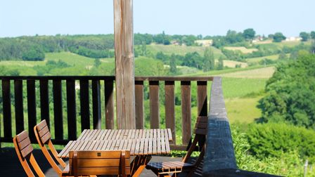 View of the Feelys vineyard in south west France