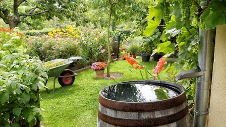 Collecting rainwater is one way of going green in your French home Pic: schulzie - iStock/Getty Imag