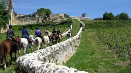 There's a horse riding holiday in France to suit every taste and ability. Pic: Unicorn Trails