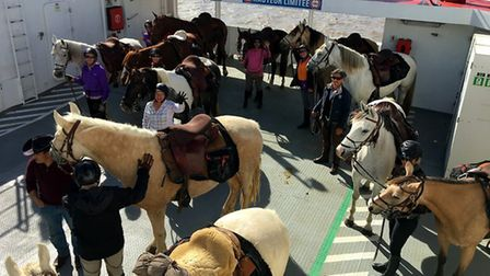 You can't get more well-behaved than this - a group on Unicorn Trails' wine trail takes to the ferry