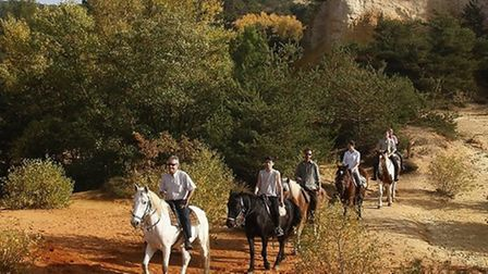 Peaceful Provence makes for a stunning riding holiday destination. Pic: In The Saddle