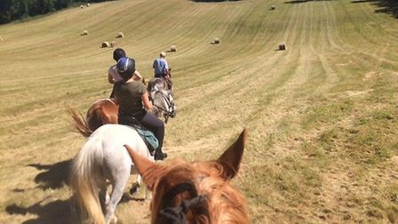 Canter through the rolling fields of Dordogne. Pic: Riding in the Dordogne
