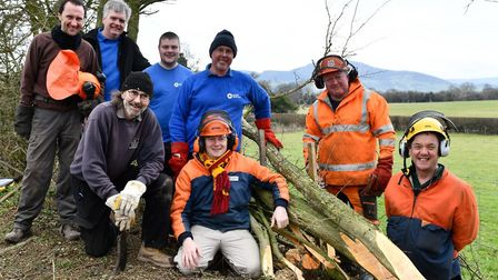 Monty Guilsfield arm hedge-laying training