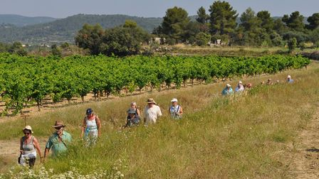 Out and about with the Vivre Ensemble en Minervois wine tasting group