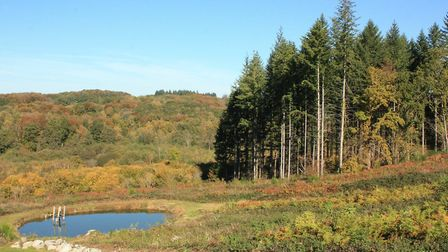 The landscape of Creuse is scenic and varied