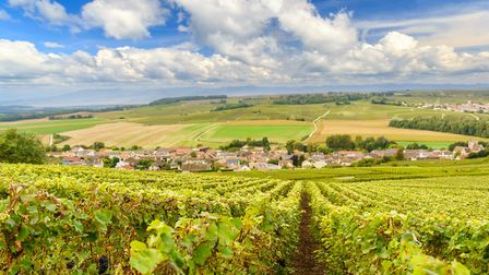 Discover a Champagne lifestyle in Marne (c) southtownboy / Getty Images