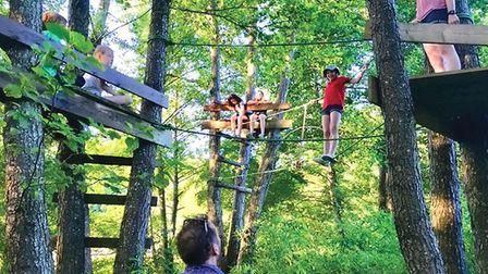 Children love playing in the treehouses and woods