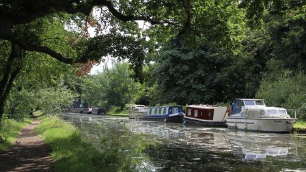 A lengthy canal section leads past New Haw (photo: Derek Pratt)