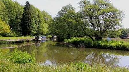 Quiet moorings where the Wey & Arun Canal used to branch off - and one day will again (photo: Derek
