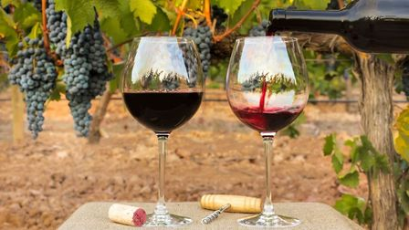 Will you be one the first to uncork a bottle of this year's Beaujolais Nouveau?