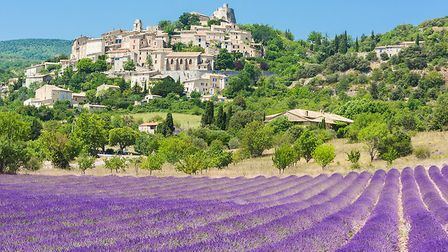 Simiane-la-Rotonde surrounded by lavender fields (c) Fyletto/GettyImages