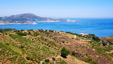 Cerbere is located on the Cote Vermeille and is close to the Banyuls wine-producing area ©Satilda Ge