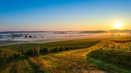 Entre-Deux-Mers is full of stunning vineyards, but the region has lots more to offer, too (c)Esperan