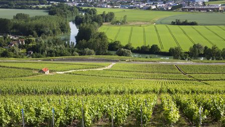 The Marne among the Champage vinyards of Hautvillers near Epernay (c) SteveAllenPhoto / Getty Images
