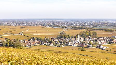 The village of Pommard in its autumn colours. Pic: Jerome Genee/Getty